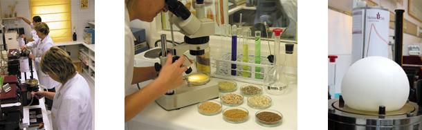 Quality lab of Harinas Polo