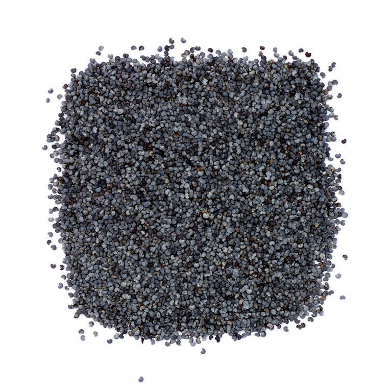 Semillas de amapola azul